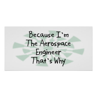 Because I'm the Aerospace Engineer Poster