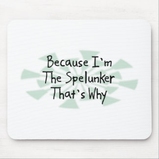 Because I'm the Spelunker Mouse Pad