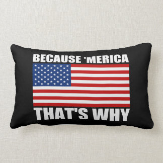 BECAUSE 'MERICA THAT'S WHY US Flag Couch Pillow