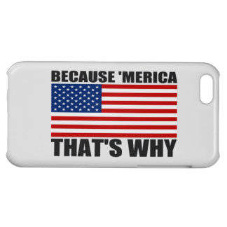 BECAUSE 'MERICA THAT'S WHY US Flag iPhone Case iPhone 5C Cases