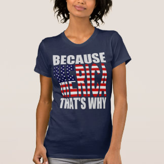 Because 'MERICA That's Why US Flag Shirt
