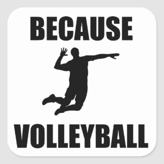 Because Volleyball Square Sticker