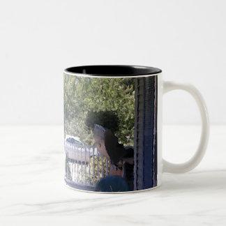 Becky's Porch Two-Tone Coffee Mug