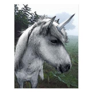 Becky's Unicorn Postcard