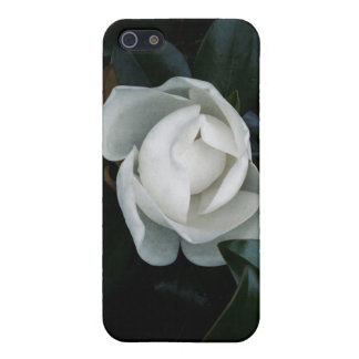 """Becoming"" iPhone 5/5c Matte Case Case For The iPhone 5"