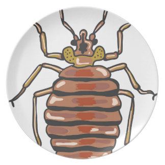 Bed Bug Sketch Dinner Plate