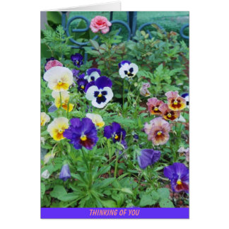 Bed of Pansies, THINKING OF YOU Card