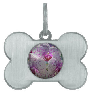 Bedazzled Pet Tags