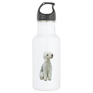 Bedlington Terrier (A)