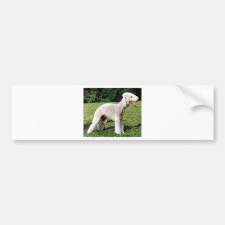 Bedlington Terrier Dog Bumper Sticker