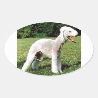 Bedlington Terrier Dog Oval Sticker