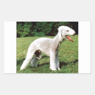 Bedlington Terrier Dog Sticker