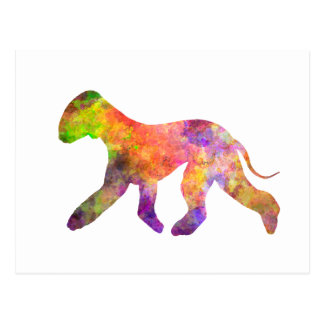 Bedlington Terrier in watercolor 2 Postcard