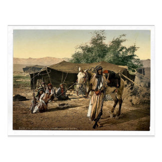 Bedouins and their tents, Holy Land rare Photochro Postcard
