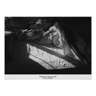 Bedsheets in Morning Light Poster