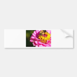 bee and bug standing on a purple flower bumper sticker