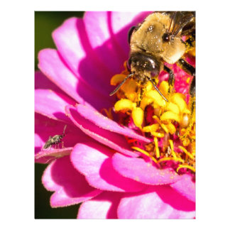 bee and bug standing on a purple flower letterhead