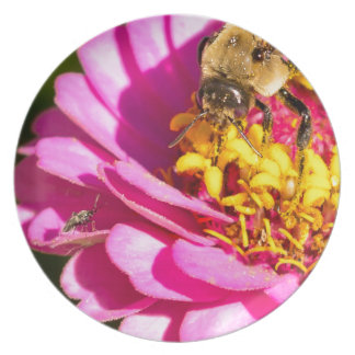 bee and bug standing on a purple flower party plate
