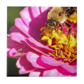 bee and bug standing on a purple flower tile