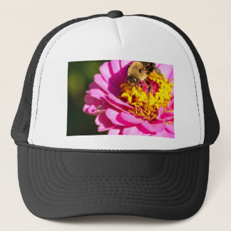 bee and bug standing on a purple flower trucker hat