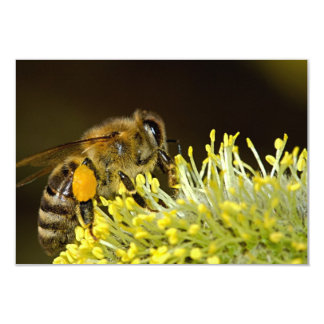 "Bee at Work 3.5"" X 5"" Invitation Card"