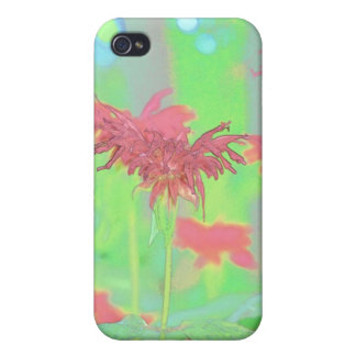 Bee Balm Blooms iPhone 4 Covers