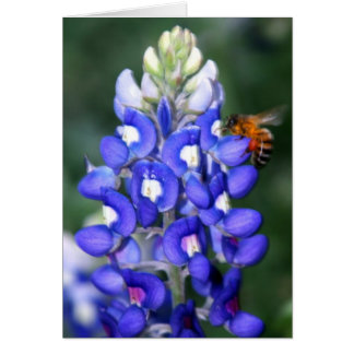 Bee & Bluebonnet Card