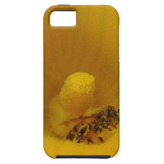 Bee Covered in Pollen iPhone 5 Case