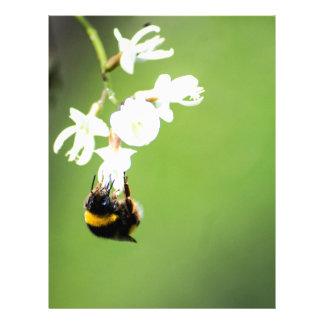 Bee Customized Letterhead
