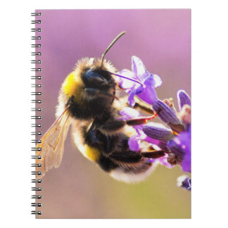 Bee Flower Beautiful Nature Scenery Notebook