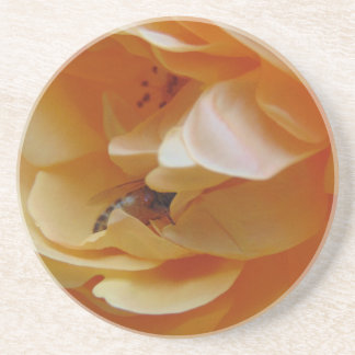 Bee In A Cream Colored Rose Beverage Coasters