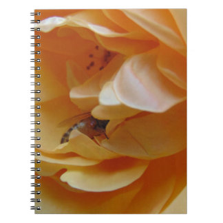 Bee In A Cream Colored Rose Notebook