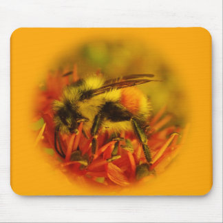 bee in crystal mouse pad