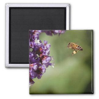 Bee in Flight Magnet