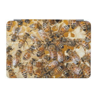 Bee keeping at Arlo's Honey Farm iPad Mini Cover