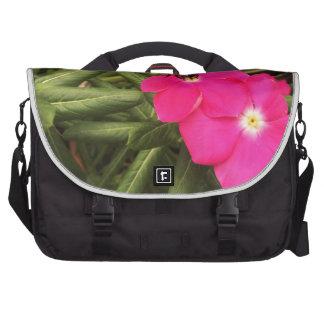 bee laptop commuter bag