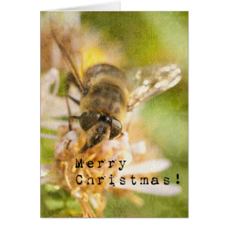 Bee Merry A Honey Bee Christmas Card