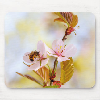 Bee On A Cherry Flower Mouse Pad