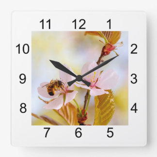 Bee On A Cherry Flower Square Wall Clock