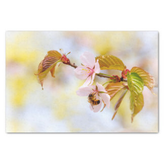Bee On A Cherry Flower Tissue Paper