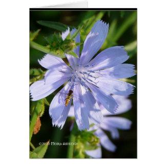 Bee on a Wild Blu Card