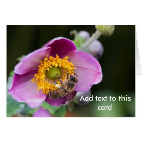 Bee on Anemone flower, card