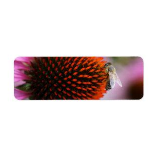 bee on coneflower return address label