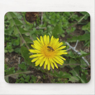 Bee on Dandelion Flower Mouse Pad