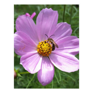 bee on flower letterhead