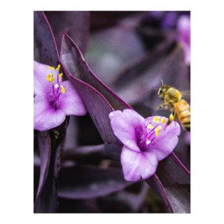 Bee on Flower Letterhead Design