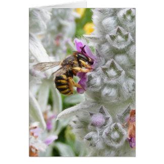Bee on Lambs Ear ~ card
