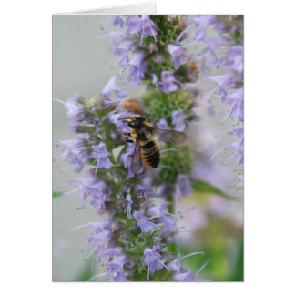 Bee on Lavender by Cynthia Turner Designs Card
