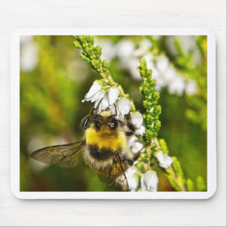 Bee on Lucky White Heather Mouse Pad