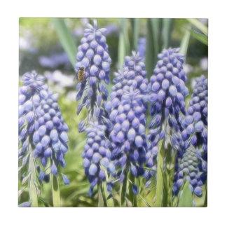 Bee On Muscari Flowers Tile